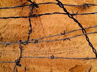 barbed wire souls and healing for our troubled community books where stories draw breath national storytelling network