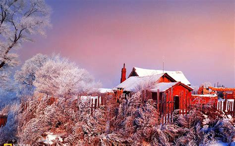christmas wallpaper national geographic national geographic photo contest 2010 global chin