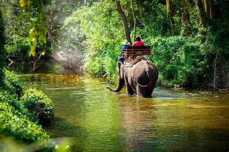 chiang mai   exquisite thai holiday