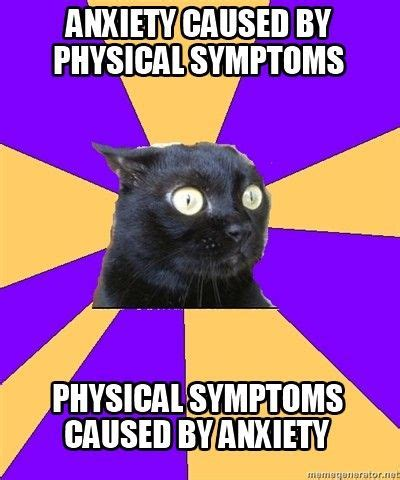 Anxiety Cat Meme - 17 best images about life with anxiety on pinterest