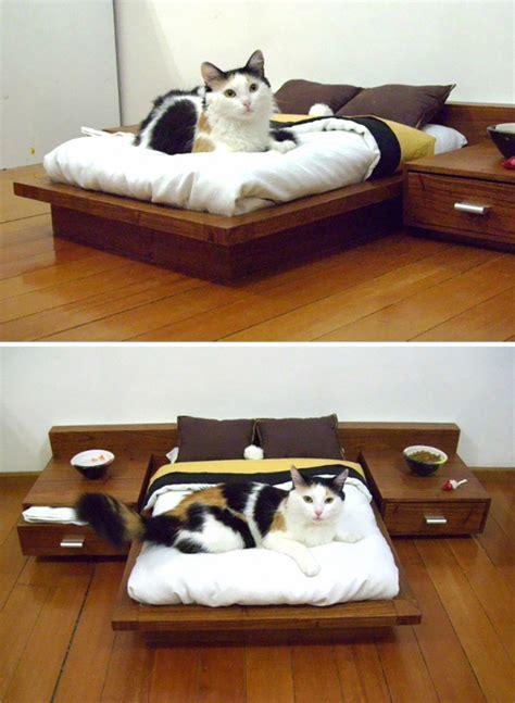 cat bedroom decor 25 amazing cat furniture ideas home design and interior