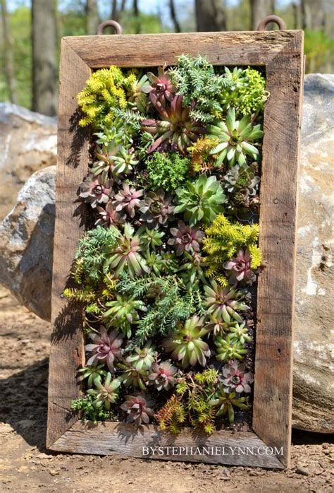 How To Plant A Vertical Garden Best 25 Succulent Frame Ideas On Hanging