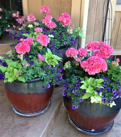 Flower Containers Gardening Gallery Personal Touch Landscape Gardening