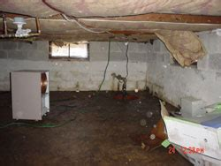 crawl space cleaning san francisco green crawl space encapsulation in bay area california