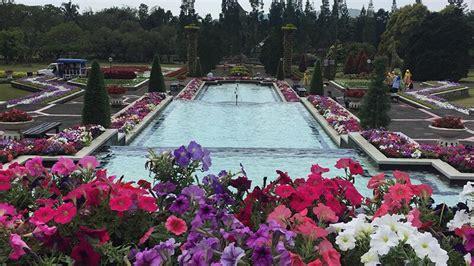 berwisata   benua lewat taman bunga nusantara piknik