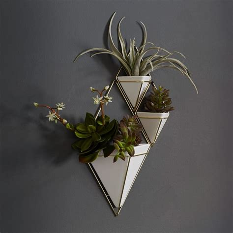 Wall Mounted Planters by The Best Houseplants And Planters For Tiny Apartments