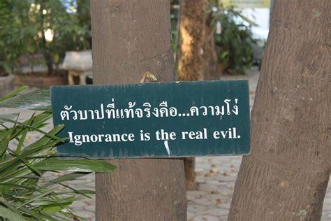 frase muy piolas persiguiendo sue 241 os tailandia chiang mai