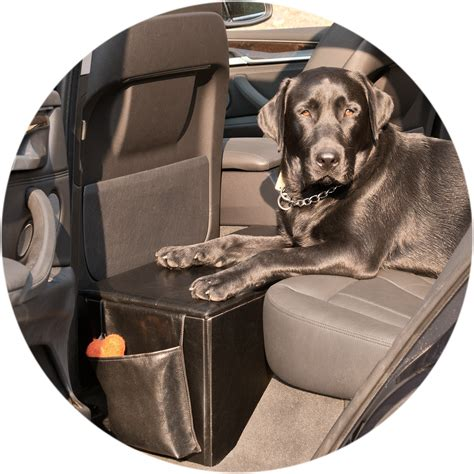 car seat extender for pets pet therapeutics black orthopetic sturdy backseat extender