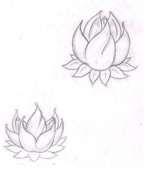 blue lotus san rafael the 25 best blue lotus ideas on lotus