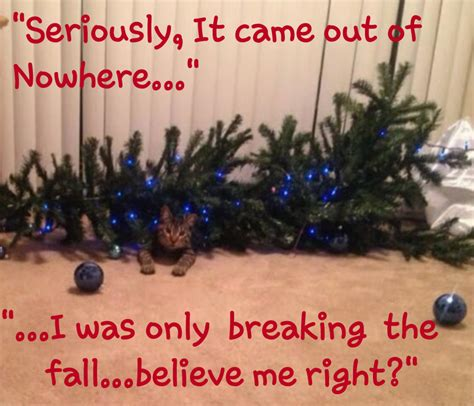 cats knocking over christmas trees tree defender 187 why what is the tree defender protecting our loved pets