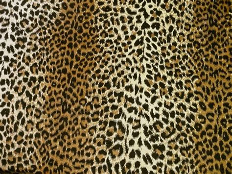 leopard print upholstery velvet cotton fabric by fragolina