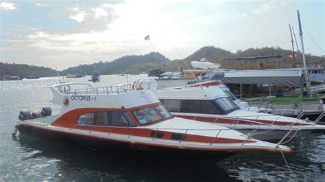 speed boat from labuan bajo to komodo island sewa kapal speed boat di labuan bajo trip komodo flores