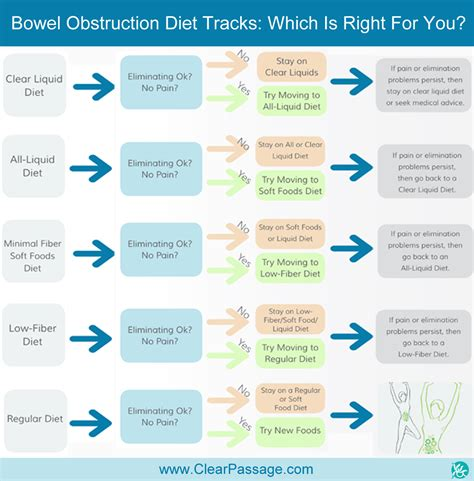 Foods That Add Bulk To Stool by How To Relieve A Bowel Obstruction Diet