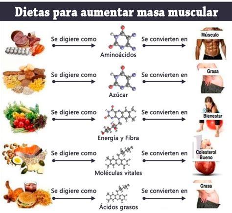 dietas  aumentar  muscular datos utiles