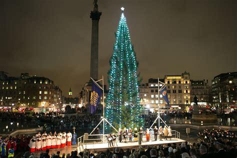 trafalgar square christmas tree sparkles  light