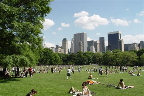 best parks the best parks in nyc for sports concerts picnics and more