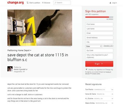 cat living in home depot for 13 years kicked out report
