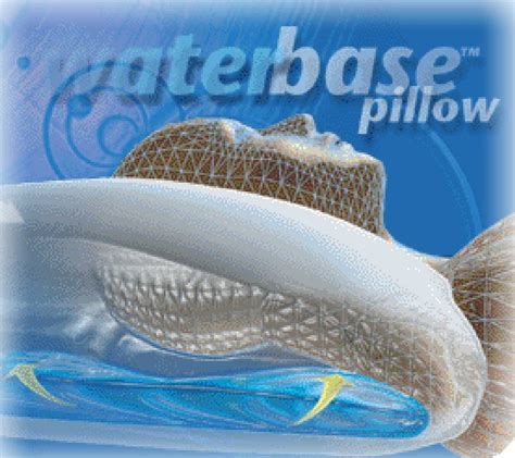 Chiroflow Water Pillow by Kerry Chiropractic Gift Certificate For Chiroflow Water Pillow