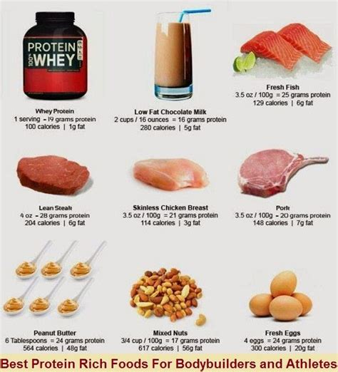 sources of healthy fats bodybuilding best protein rich foods for bodybuilders and athletes