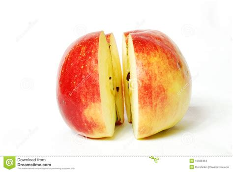 A In Two Parts two parts of one apple stock images image 16489464