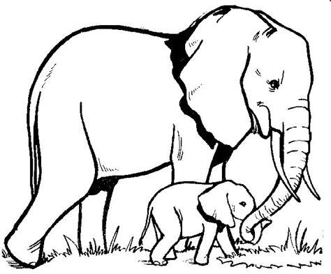 african elephant outline tattoo pinterest images of 39 best zen elephants ref images on pinterest elephants