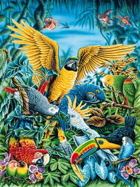 unilibro libreria universitaria uccelli tropicali 1000 pezzi puzzle unilibro