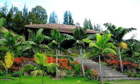 Palm Gardens by Discovery On Safari A R R On Lake Kivu At Palm Garden Resort