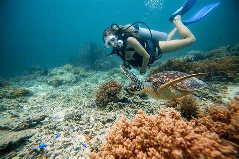 film blue lombok snorkeling with sea turtles on gili trawangan