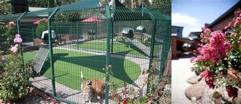 The Cottage Kennels Cattery by Tips For Choosing A Boarding Kennel Australian Lover