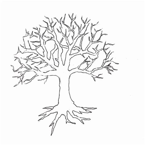 Coloring Pages Of Trees Without Leaves Snap Cara Org Tree Without Leaves Coloring Page