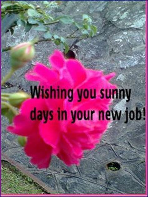 Sunny Days In New Job. Free At Work Etc eCards, Greeting