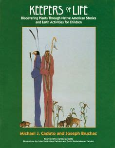 through indigenous books the baobab tree children s library