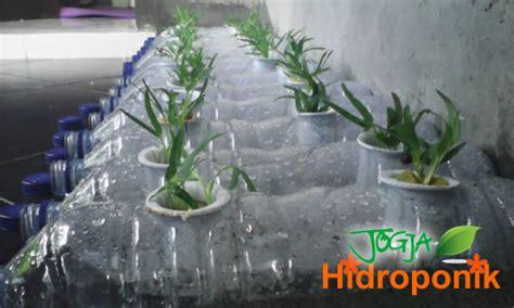 membuat hidroponik dari botol aqua kreasi aqua botol bekas untuk tanaman hidroponik jogja