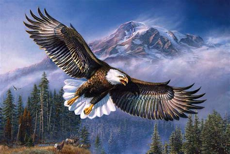 Las Lembaran Eagle 1000 captivating eagle flying hd wallpapers eagle wallpaper hd free for mobile android