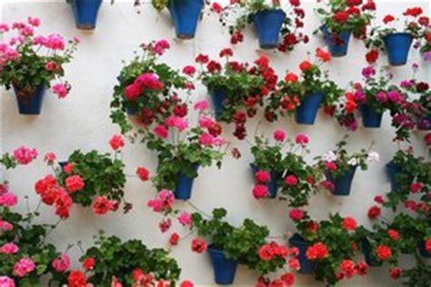 pot dinding a 1pcs purie garden