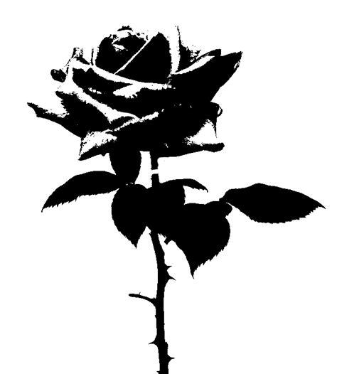 rose stencil  generical  deviantart