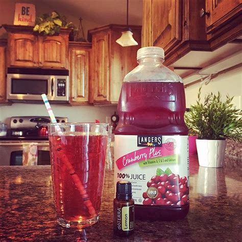 3 Day Cranberry Juice Detox by Best 25 Cranberry Juice Detox Ideas Only On