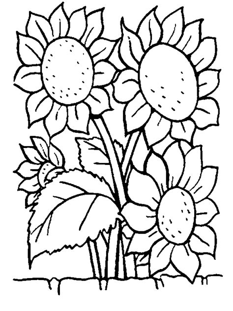 Flowers Coloring Pages Coloringpages1001 Com Flower Coloring Pages