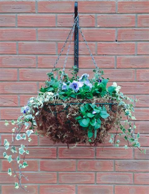 Winter Hanging Baskets Garden Ideas Landscape Winter Garden Ideas Uk