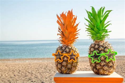 tropical ideas kara s ideas tropical surfing birthday kara
