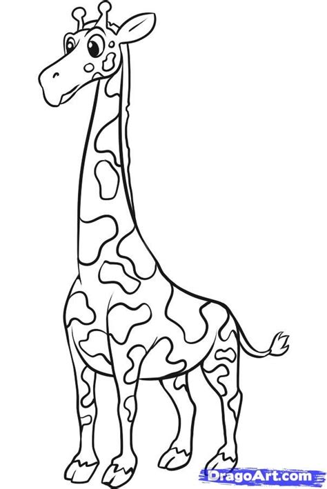 giraffe coloring pages pdf how to draw a simple giraffe step by step safari animals