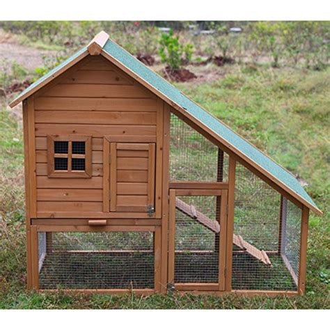 best small backyard chicken coops xpressionportal