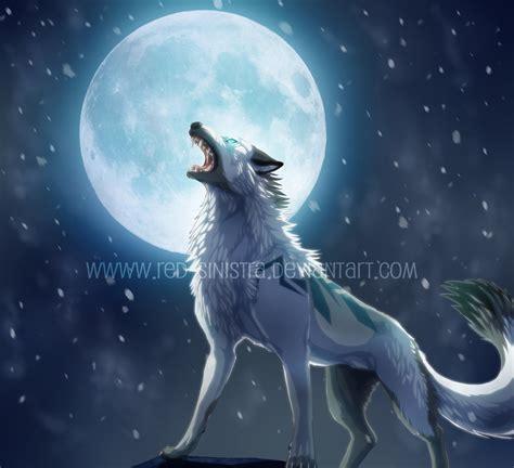 5 11 Black Wolf Blue 16010 howling blizzard by sinistra on deviantart