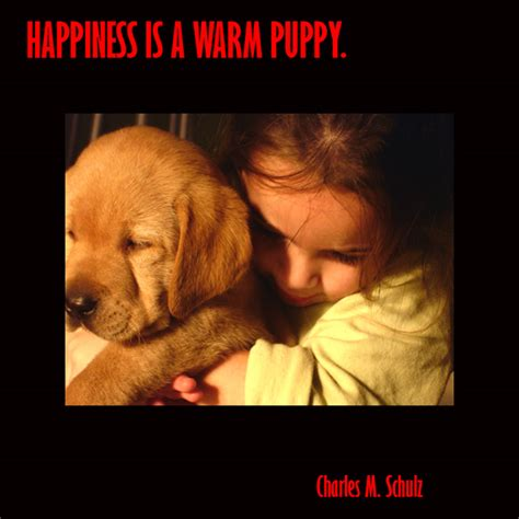 when is a puppy an images with quotes