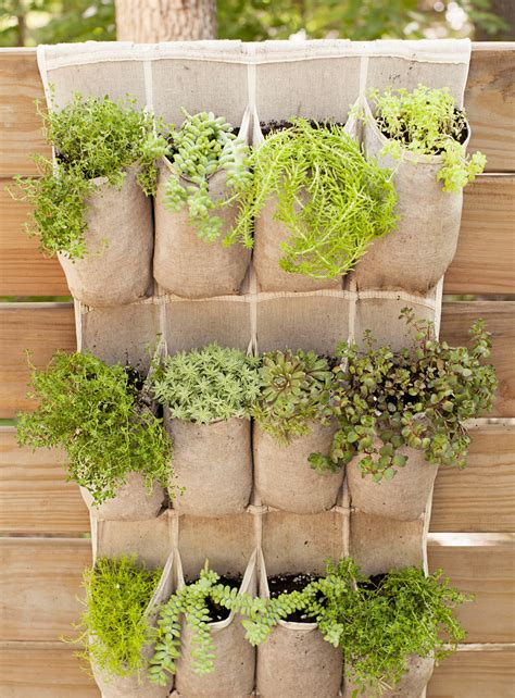 Small Garden Plant Ideas Container Gardening Ideas Potted Plant We And Outdoor
