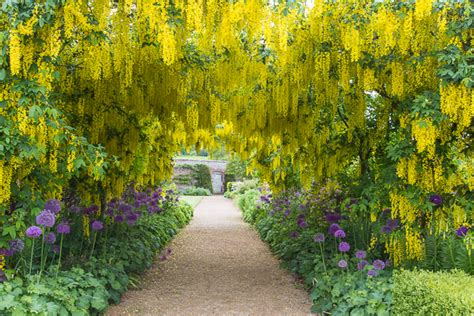 Long Kitchen Design helmsley walled garden come and discover our relaxing garden