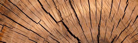 treppenbau polen elegante holztreppen und ihre wichtigsten vorteile