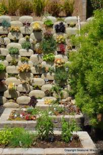 How To Plant Vertical Succulent Garden Vertical Succulent Garden Saves Space Looks Great