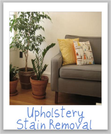 stain removal upholstery upholstery stain removal tips including video