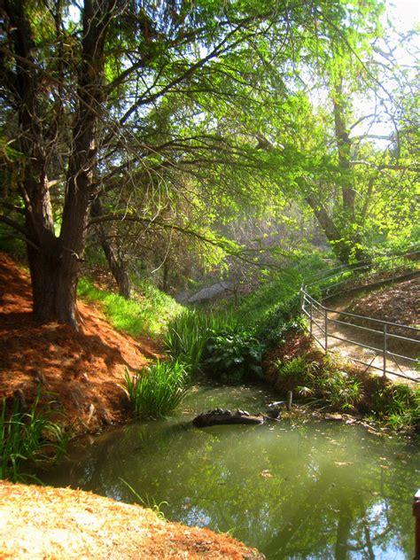 Ucr Botanic Gardens Alder At The Botanical Gardens Of U C Riverside Flickr